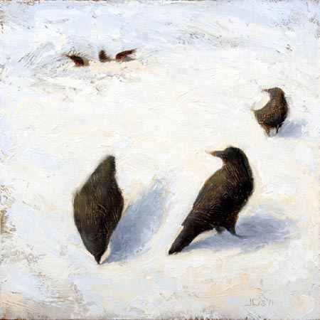 Crows on Snow 3